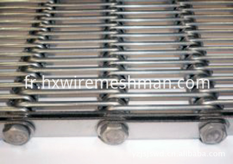 eye link conveyor belt
